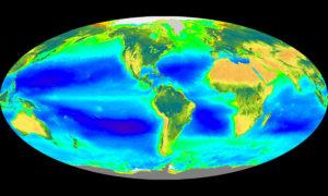 NASA satellite image of surface ocean
